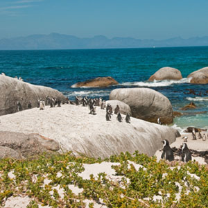Best time to visit the Garden Route