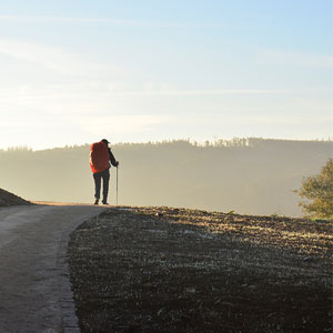 Best time to walk the Camino de Santiago