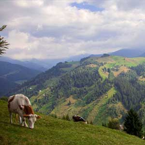 Romania walking guide