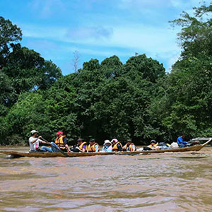Benefits of a short tour to Sarawak