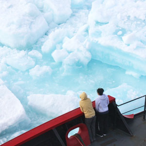 Arctic cruises travel guide