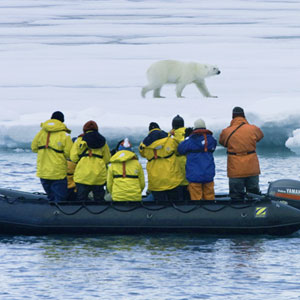 Arctic cruises advice