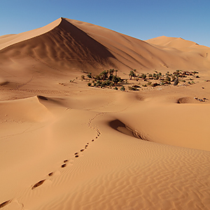 The Sahara Desert travel guide