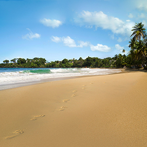 Best time to visit Tobago