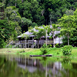 Things to do in Borneo