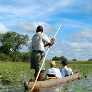 Safari holidays in Botswana travel guide