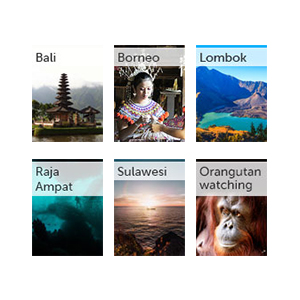 All our Indonesia guides