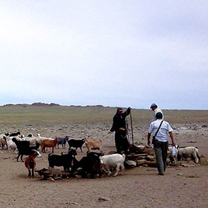 Responsible travel in Mongolia