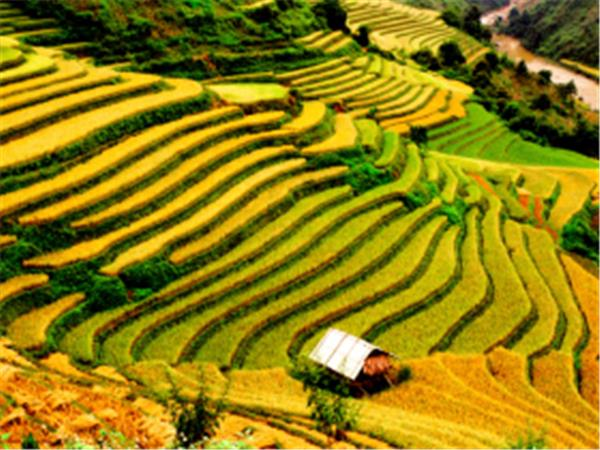 Vietnam tailor made vacation, the North West