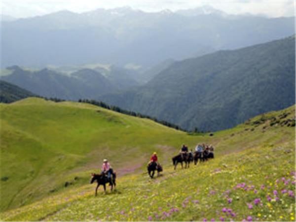Georgia horse trekking vacation