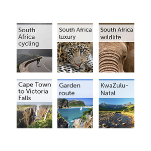All our South Africa guides