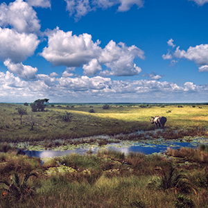 Things to see & do in KwaZulu Natal