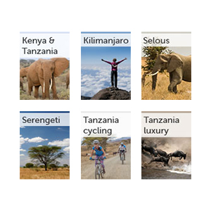 All our Tanzania guides