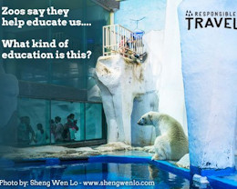 Say no to zoos