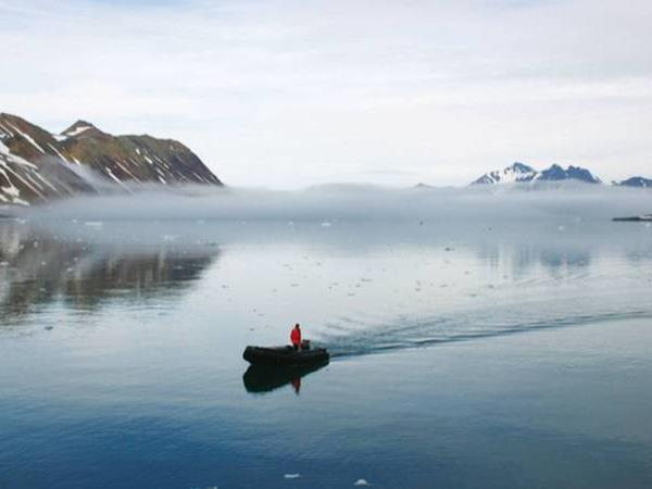 Spitsbergen cruise to the Arctic