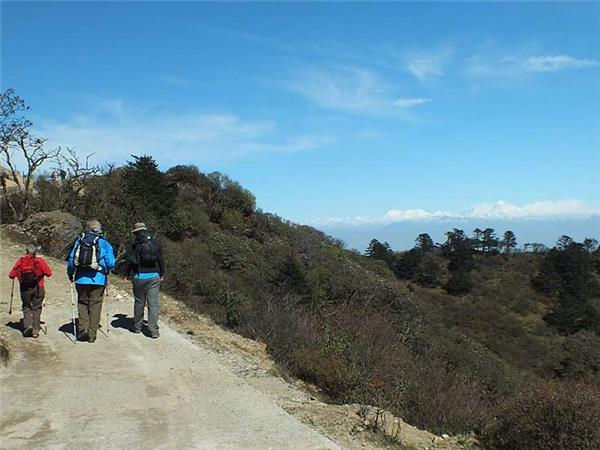 Singalila Ridge trekking holiday in India