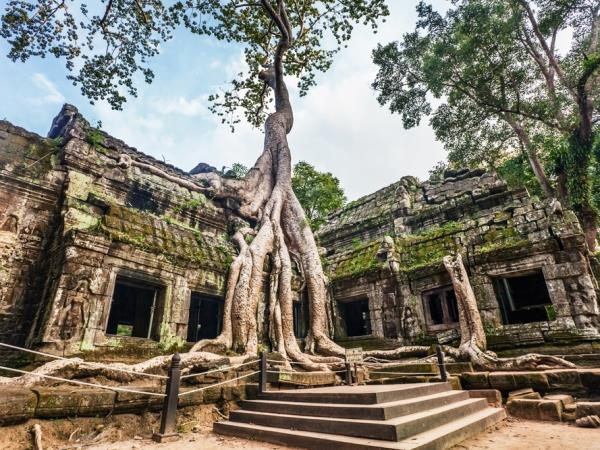 Cambodia holiday, wildlife & culture