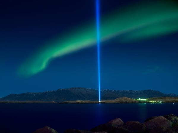 Northern lights and whale watching cruise in Iceland
