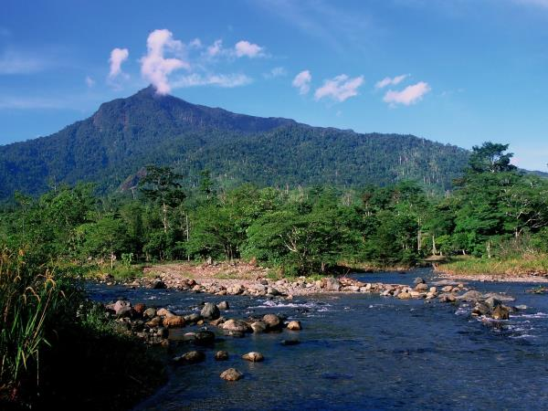 Borneo vacation, culture and wildlife