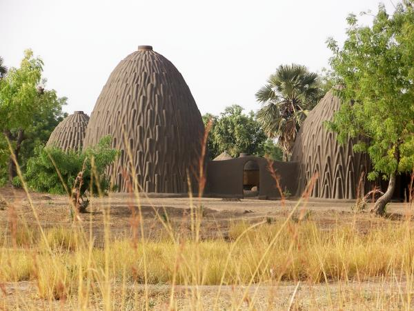 Cameroon vacation, culture and wildlife