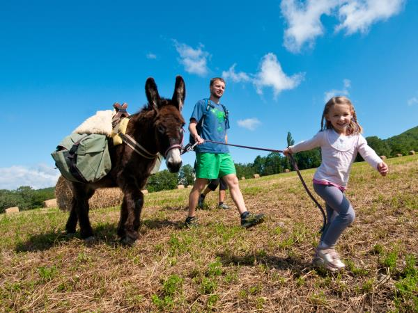 Family walking vacations with a donkey, France