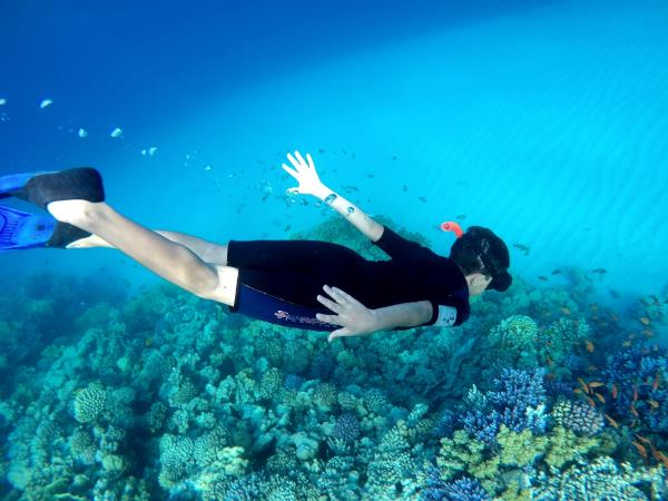 Family scuba diving holidays for certified divers, Red Sea