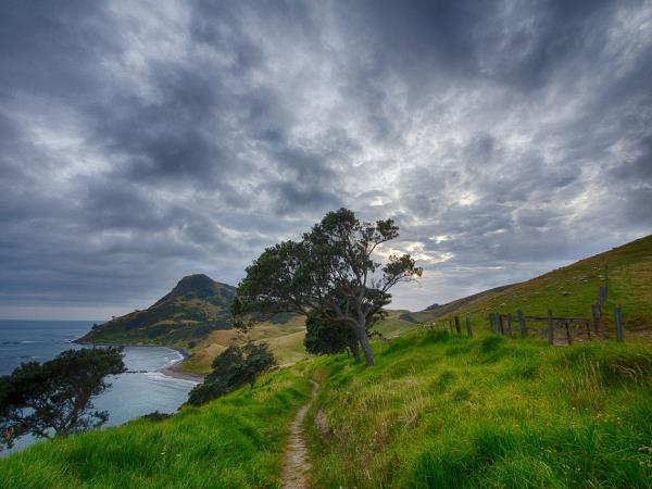New Zealand vacation, tailor made