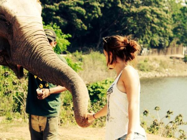 Thailand wildlife sanctuary volunteering holiday