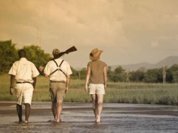 Mobile walking safari in Zambia