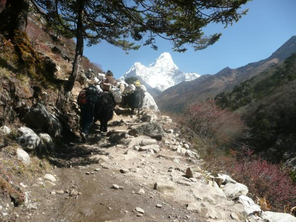 Nepal trekking holiday and Tibet cultural tour