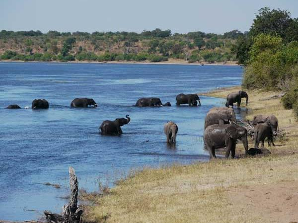 Botswana luxury tailor made vacation