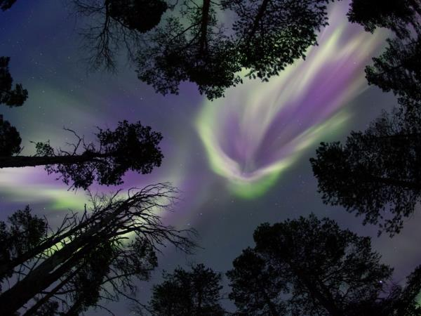 Northern Lights activity vacation, Finnish Lapland