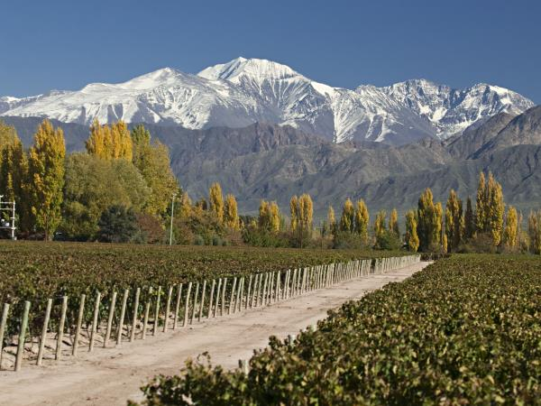 Tailor made vacations to Argentina