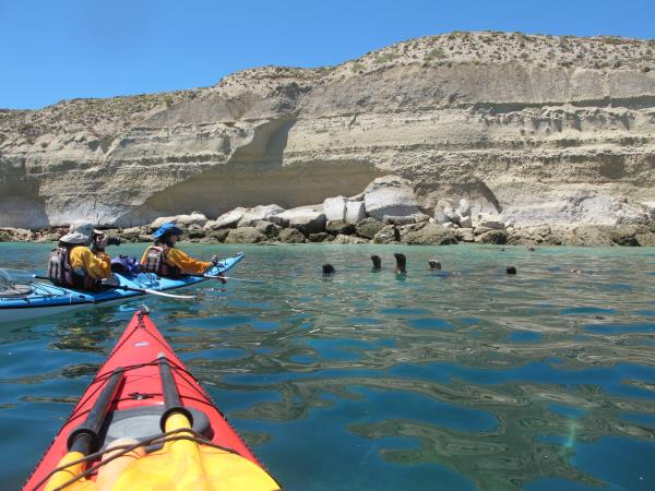 Sea kayaking in Patagonia, Chile