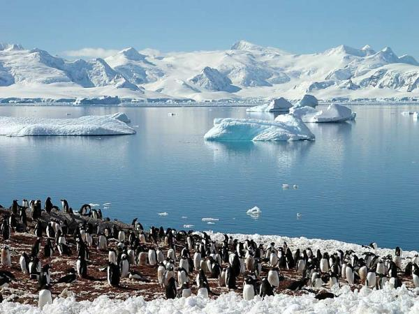 Antarctic circle cruise, Antarctica