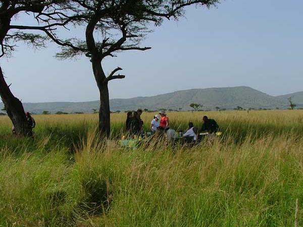 Kenya wildlife camping safari