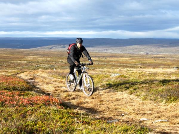 Mountain biking vacation, Finnish Lapland