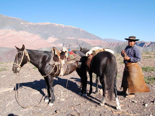 Horse riding & trekking in Argentina