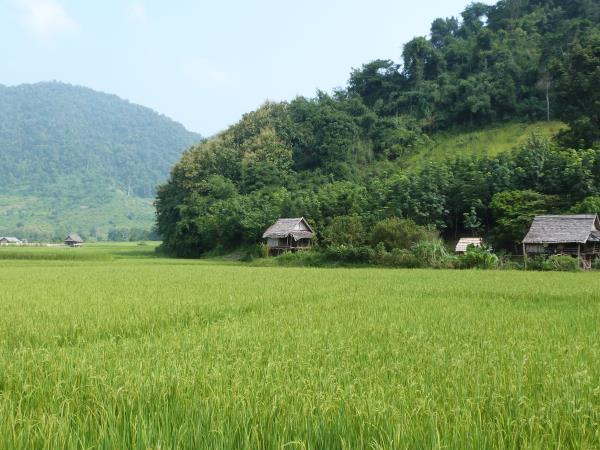 Laos vacations, tailor made