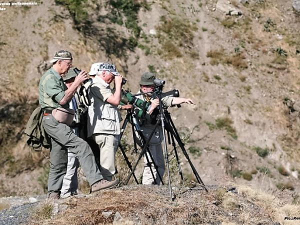 India bird watching vacation in the Himalayas