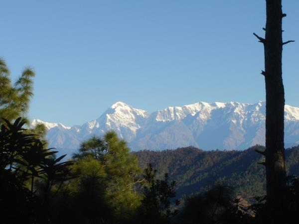 Binsar to Jageshwar trekking holiday, India