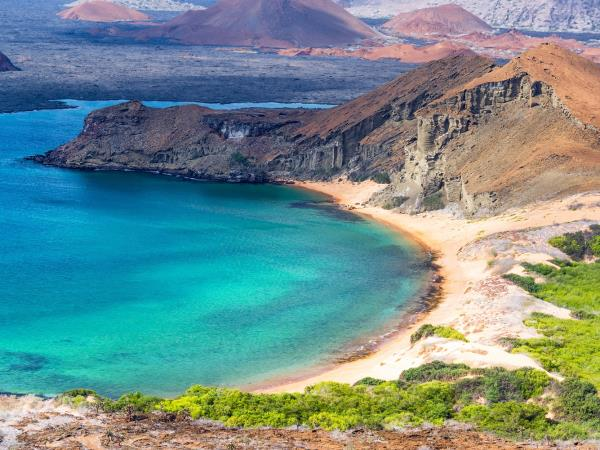 Ecuador and Galapagos Islands wildlife vacation