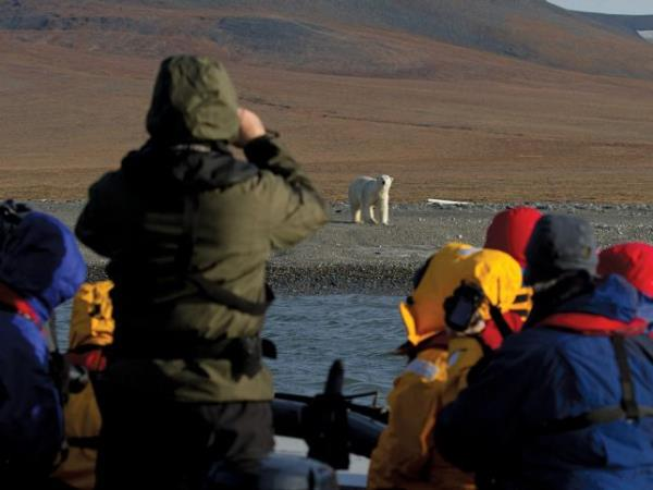 Chukotka and Wrangel Island wildlife cruises, Russia