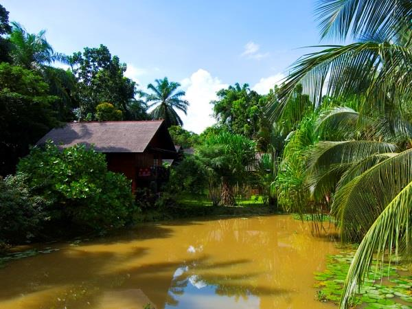 Borneo family vacation, tailor made
