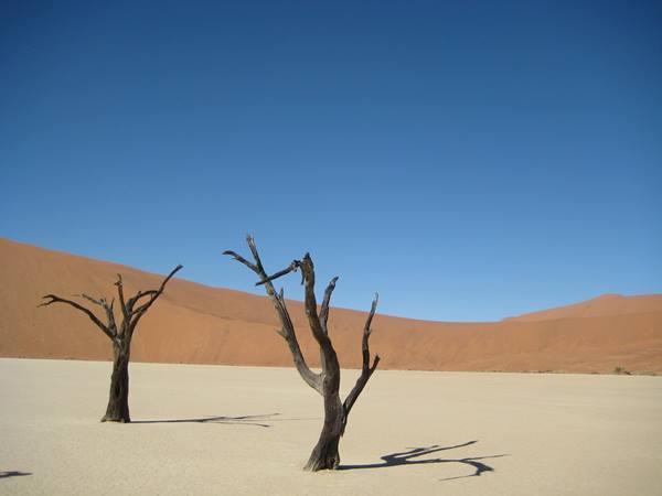 Namibia self drive safari