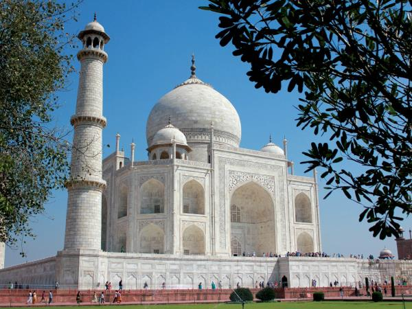 India wildlife and cultural vacation