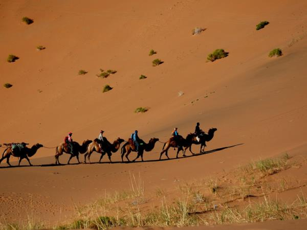 Mongolia tour, land of the great Khan