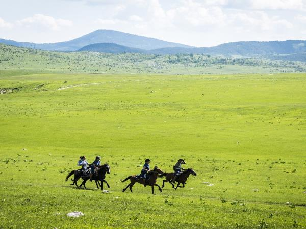 Horse riding vacation in Montenegro