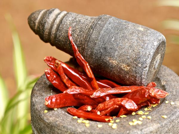 Ayurvedic cooking vacation in Southern India