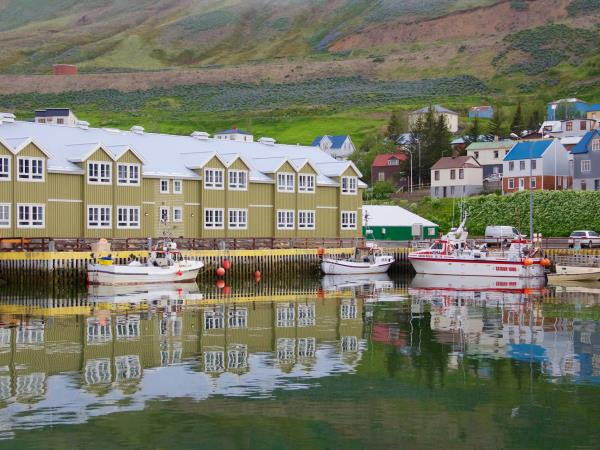 Iceland self drive vacation, whale watching & horse riding